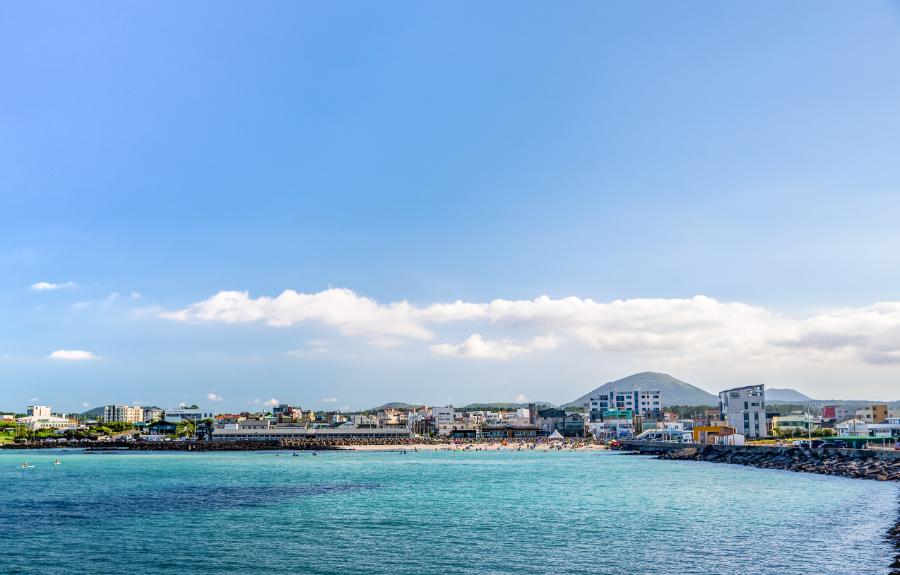 세화해변 (6).jpg